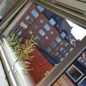 Rena fönster efter fönsterputs i Malmö
